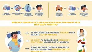 El Corona Virus y Los Animales - Medidas Generales
