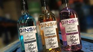 Distribuidores de GINSIN PREMIUN en Sevilla