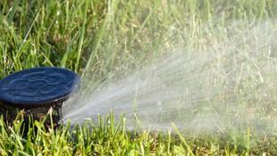 Especialistas en sistemas de riego para jardines y para la agricultura en Elda