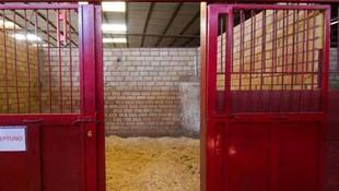 Centro de equitación en Sevilla