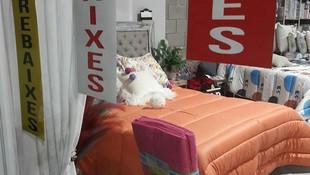 Decoración textil en Els Hostalets de Balenya