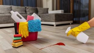 Los mejores expertos en limpieza a domicilio en Alcobendas