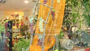floristerias en León