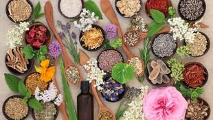 Herbolario y dietética enTenerife