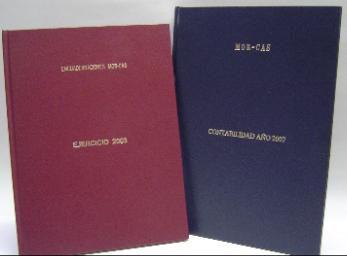 Libros  contabilidad