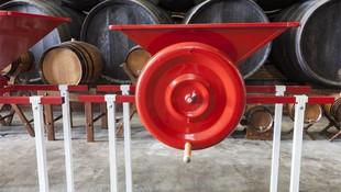 Vinos elaborados de forma tradicional