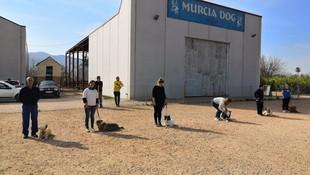 Instalaciones de Murcia Dog