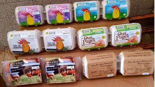 Diversos tipos de huevos