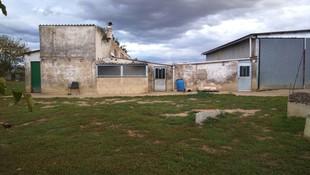 Residencia canina en Álava