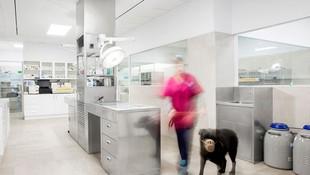 3 salas de hospitalización