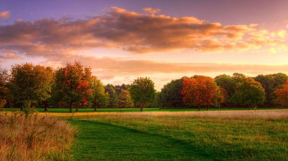 Natural-landscape-autumn-sunrise-forest-sky-clouds_2560x1600