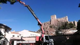 Servicio de camión grúa para trabajos de jardinería