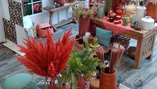 Creando ambientes. Gran variedad de lámparas decorativas