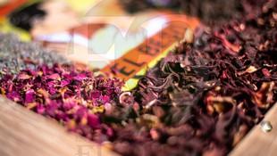 Venta de plantas medicinales El Beso