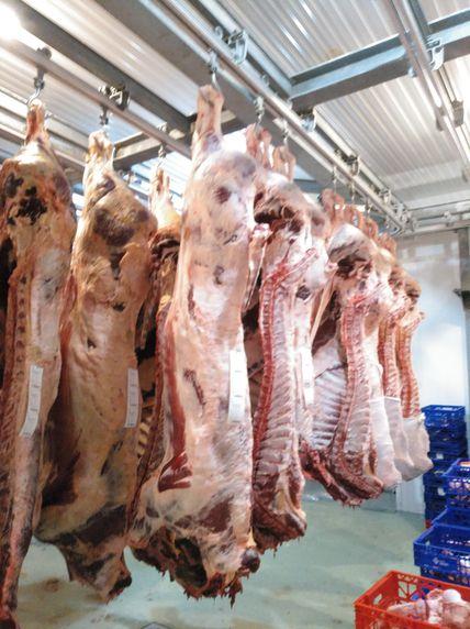 Carnicería Muñogalindo por ganadería