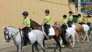 Paseos a caballo en Málaga