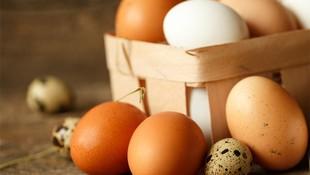 Huevos de corral en Aranda de Duero