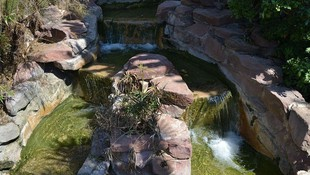 Proyectos de paisajismo Murcia