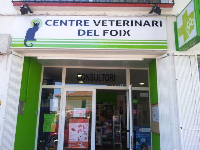 Colaboraciones veterinarias con protectoras