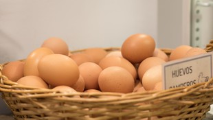 Venta de huevos camperos en Madrid