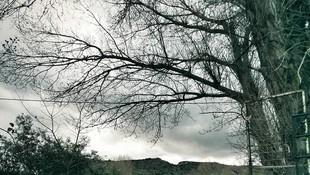 Hipnosis. Psicografología en Cuenca