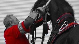 Todo tipo de festejos con caballos en la Comunidad Valeciana