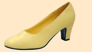 Zapato de salón
