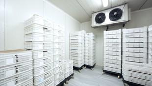 Más de 20 años de experiencia instalando equipos de refrigeración