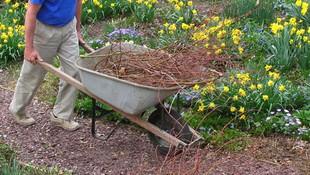 Empresa dedicada a la jardinería en general en Girona