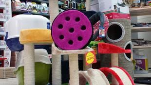 Tienda de accesorios, ropa y complementos para gatos en Santa Coloma de Gramanet