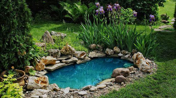 Diseño y mantenimiento de jardines y piscinas en Almería
