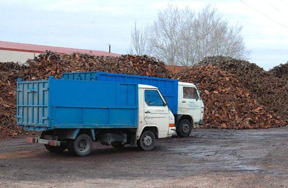 Nuestros camiones para almacenar leña