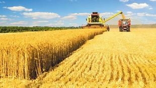 Gasóleo B para uso agrícola o industrial en Albacete