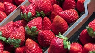 Venta de fresas en Huelva