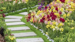Mantenimiento de jardines y comunidades en Salamanca