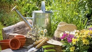 Productos de jardinería