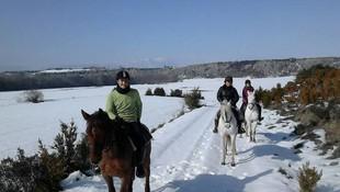 Turismo ecuestre en Navarra