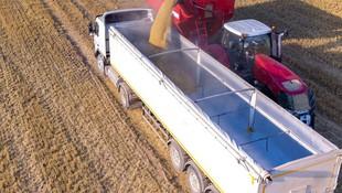 Transporte de mercancías a granel en Valencia