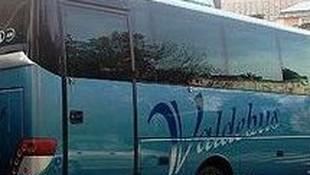 Autocares y minibuses  adaptados para personas con movilidad reducida.