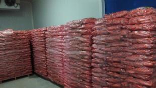 Zanahorias listas para ser distribuidas tanto a nivel nacional como internacional