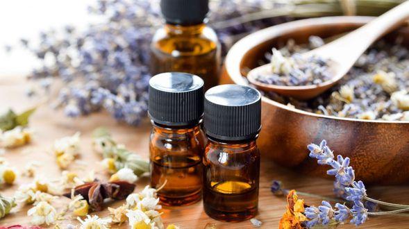 000 herbolario medicina natural plantas medicinales  (1)