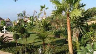 Proyectos para la construcción de jardines