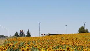 Estación de servicio con vistas al campo en la Carretera de Valencia