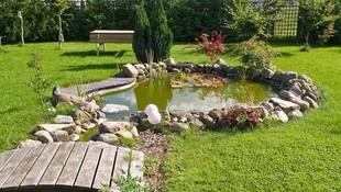 Diseño y mantenimiento de todo tipo de jardines