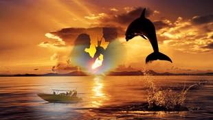 Puesta de sol y avistamiento de delfines