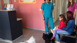 Nuestra prioridad la salud de tu mascota