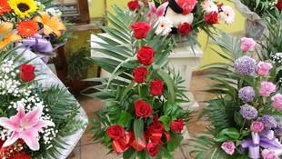 Amplia variedad de flores