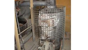 Maíz tostado que posteriormente se muele para hacer harinas