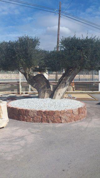Jardinera en mármol rojo Alicante