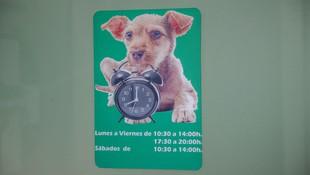 Horario de atención veterinaria
